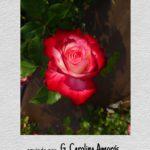 picsart_05-08-03-37-15