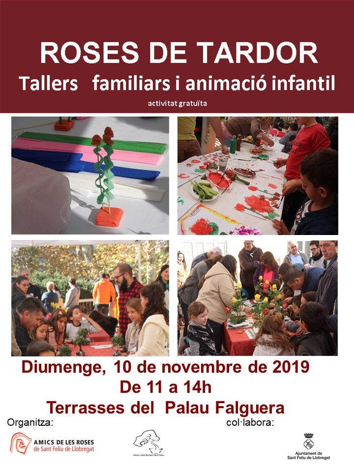 cartell tallers 2019