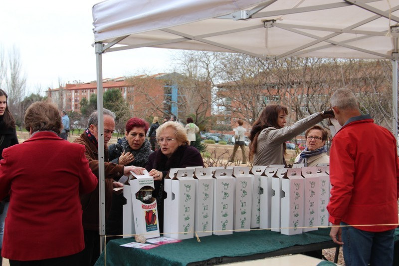 Venda de rosers a la plantadaTorreblanca estand de venda de rosers,  2014 JGU (74)