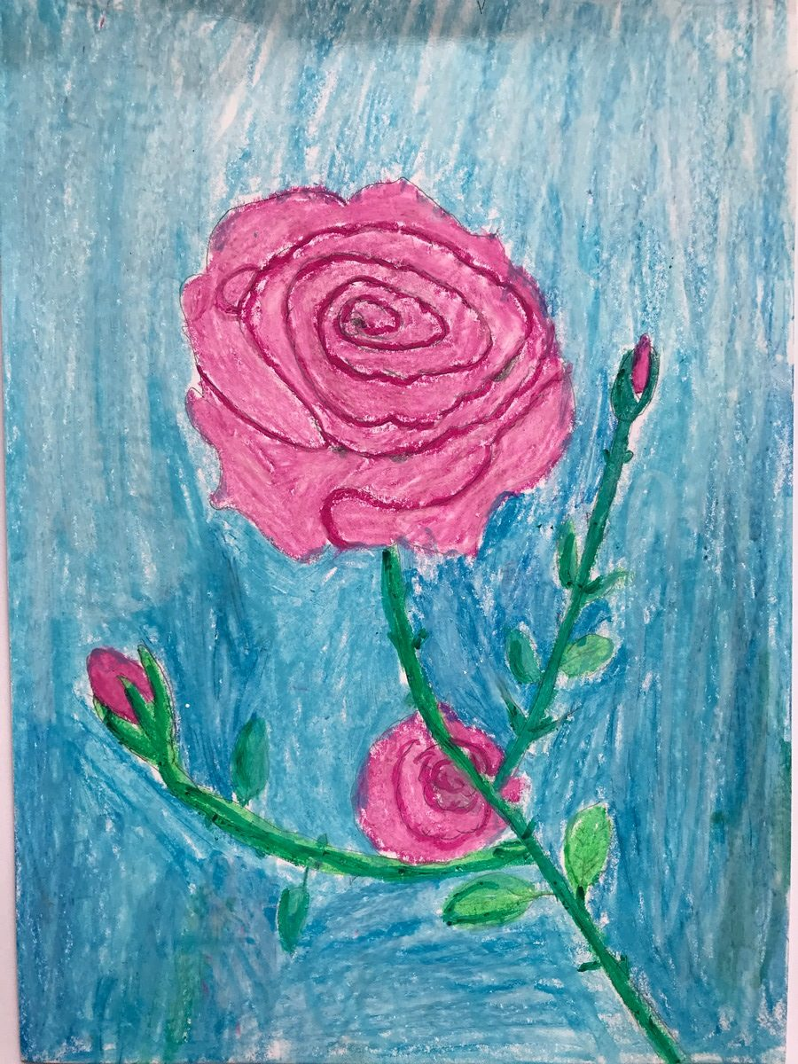 Maria Moreno 7 Anys Roses I Rosers Esc. Mestral