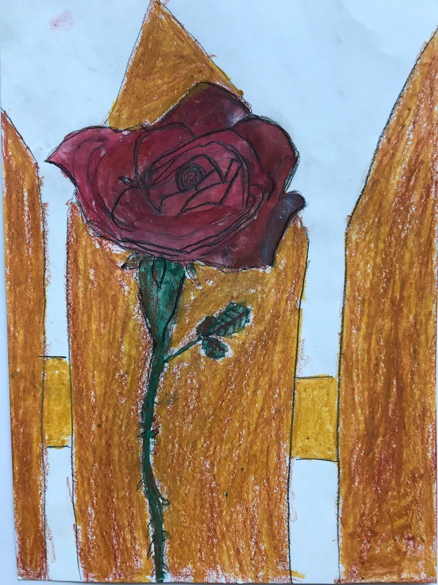 Pol Sánchez 6 Anys Roses I Rosers Esc. Mestral